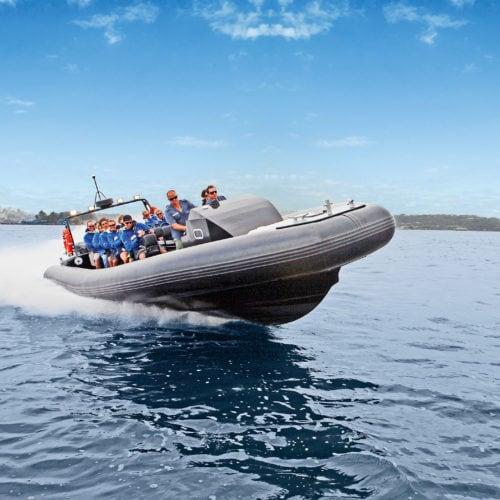 Ocean Extreme Thrill-Ride