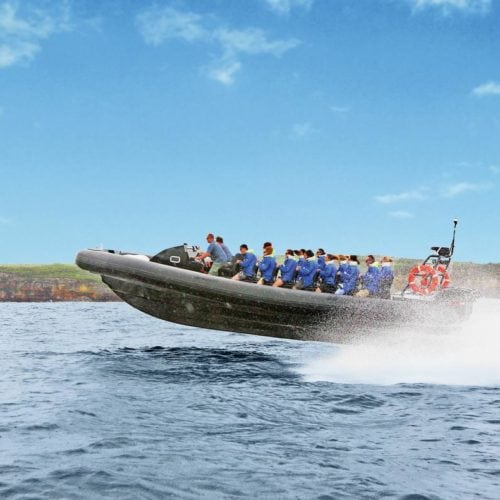 Ocean Extreme rigid-inflatable boat (RIB) in Palm Beach